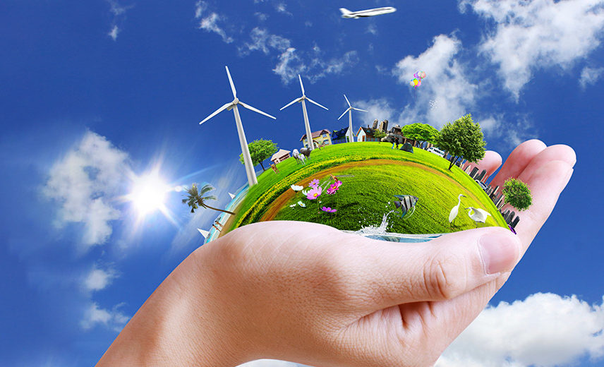 Международная Олимпиада Экология